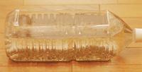 ペットボトル水槽